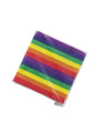 Rainbow Napkins (20pcs)